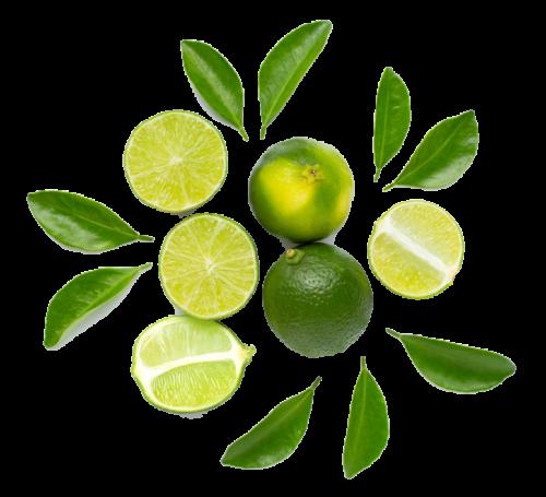 ekstrakt-limonki-zalety