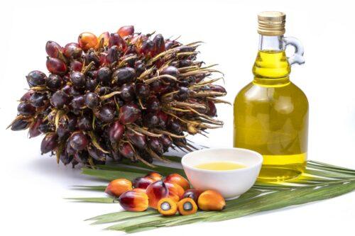 olej-palmowy-zalety (3)